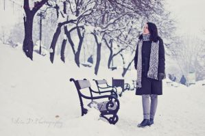 vintage winter by Silvia-D