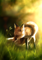 Spring fox by Martith