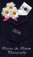 Daisies and Denim logo by celticpath