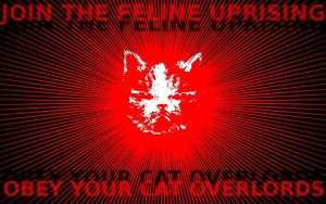 Obey your feline overlords. by Hurrdeer