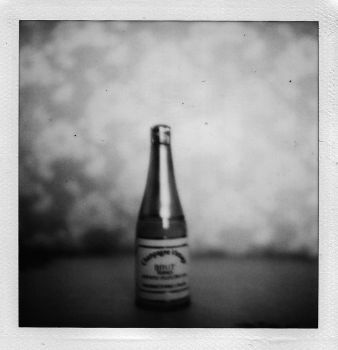wine bottle 2 by S-Banh