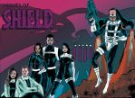 Agents Of Shield by Mathieugeekboy