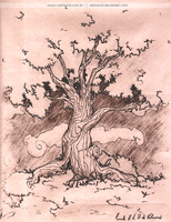 Old Lady Tree by vielmond