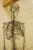 Wire Skeleton Bust by Squeep