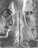 Harry Potter vs. Lord Voldemort by Wanted75