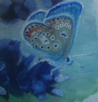 Beautiful Blue Butterfly by QuixoticouS
