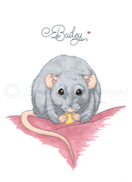 Bailey Rat! by SweetIllustrations