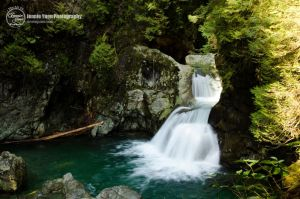 The Twin Falls by sweetcivic
