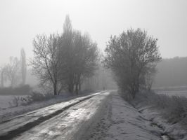 Snowy road 2 by House666