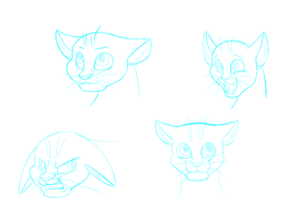 Expressions practise by Kathy-Meow