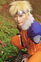 NARUTO by clamp90357