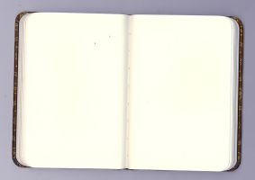 Blank Journal 1 by guggenheim
