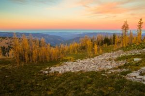 Larch Sunrise by jasonwilde