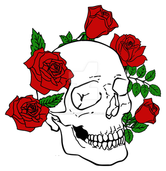 Skull and roses 2 by 357supermagnum