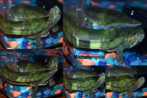 Micheal Angelo by poseyangelo