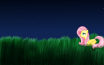 Fluttershy's Night by I-fell
