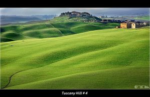 Tuscany Hill  4 by Marcello-Paoli