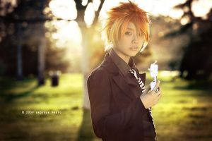 Leo, Fairy Tail by andy-rak
