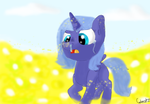 Luna's Allergies/ Entry for Contest by cutecatz
