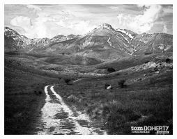 the trail by PicTd
