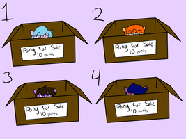 Surprise box pony adopts by x-Fox-Feathers-x