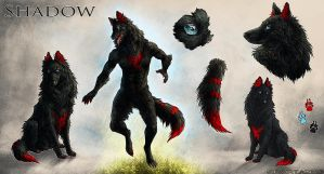 Reference Sheet - Shadow by UglyDucklingArt
