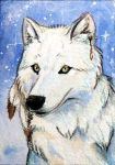 Wolfess ACEO by Stormslegacy