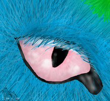 Kailo Realism Eye Practice by TimidFawn