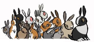 All The Rabbits by Skia