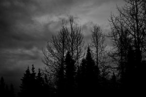 Stormy Night by Raventepes