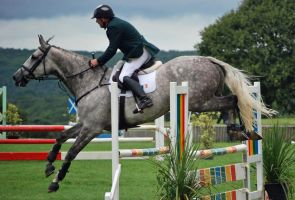 Irelands Jump to Second by equinestudios