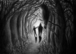 Through the Tunnel of Trees by Idator