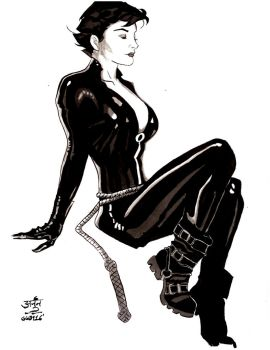 30-Catwoman by ErickArjuna