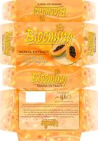 Blooming Packaging2 by freeagent08
