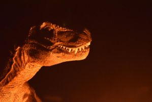 t-rex head profile in candle light by veromworel
