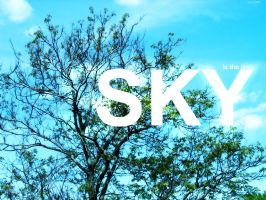 only sky is the limit by Pyrko