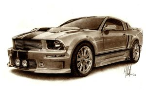 2008 Mustang by tin23uk