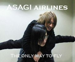 Asagi Airlines. by IronyChild