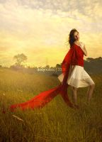 :: Indonesian SUNSET :: by nukieu