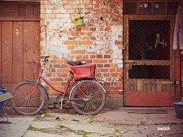 bicycle by k-a-d-a-t-h