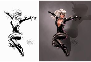 Black Cat colors by IvannaMatilla