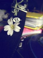 Flower And Eightball by Autopsyh