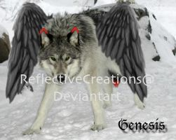 Genesis by ReflectiveCreations