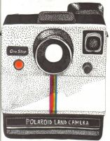 Polaroid Camera by applefruit