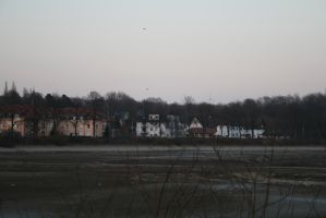 Houses by Jhadin