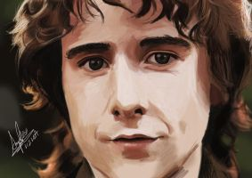 Pippin Took Digital Painting by superfizz