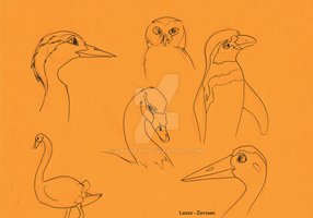 Traditional bird sketches by zavraan