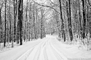 Snowmobile Trail out back by BelovedImmortal