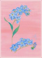 Forget-Me-Not Card by JoannaMoory