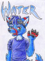 Water Badge Commission by ImaginaryFox